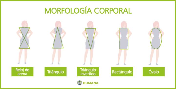 Humana_secondhand_Morfologías corporales